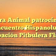Tierra Animal patrocina III Encuentro Hispanoluso Agrupación Pitbulera Flaycan